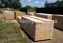Spruce and fir timber for export