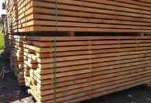 Beech saw timber